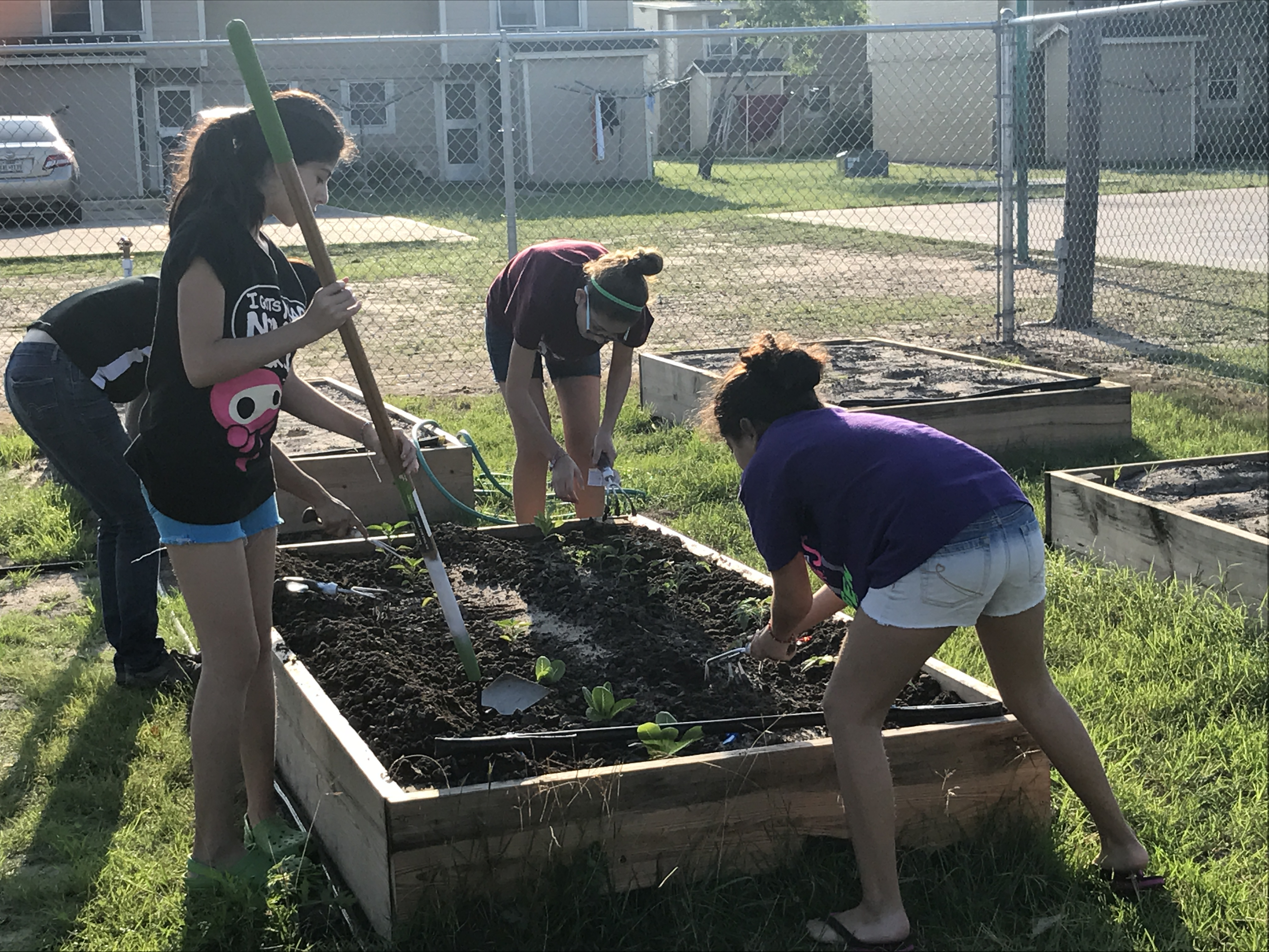 Youth Garden Bed
